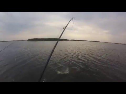 Рыбалка на раскатах Волги Астрахань