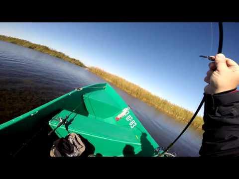 Клип о рыбалке на о. Колочный, щука под водой