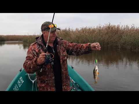 Рыбалка на щуку и окуня в ноябре (2020)
