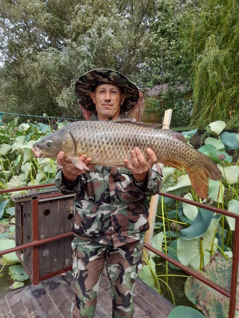 рыбалка на сазана остров Колочный